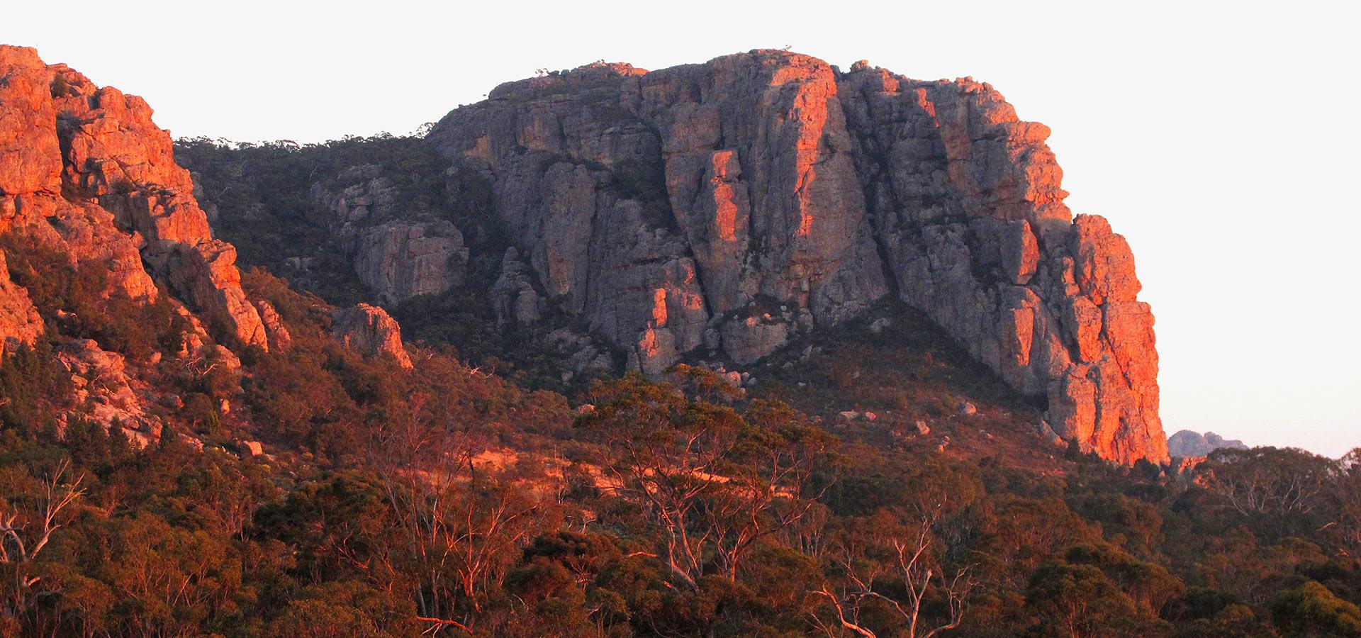 Contact The Climbing Company photo